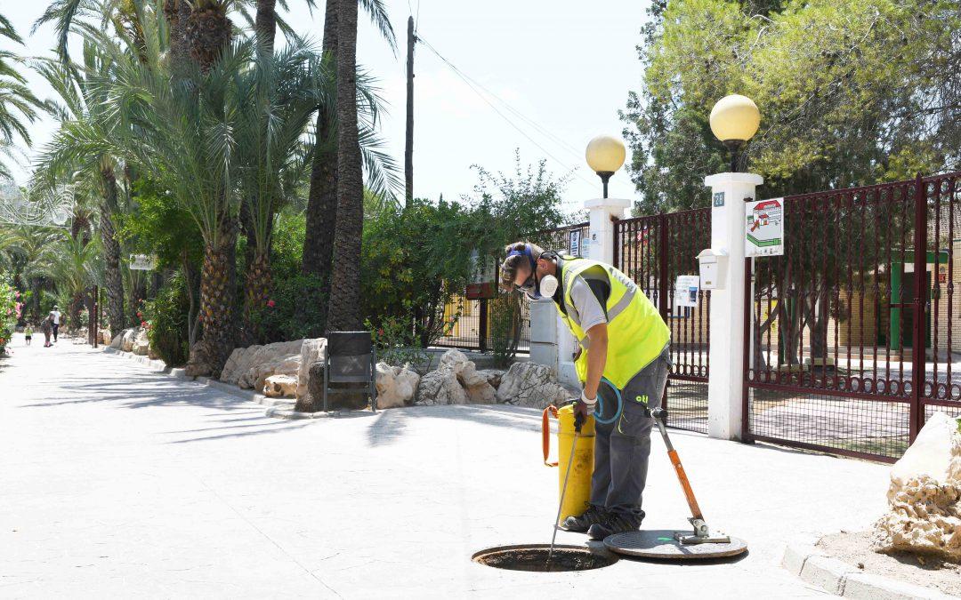 El Ayuntamiento de Albatera ha realizado una campaña de desinfección y desratización