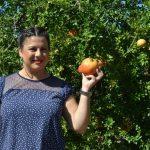 Turismo presenta las III Jornadas Gastronómicas de la Ganada Mollar