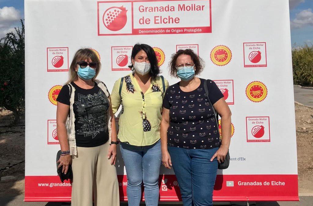 Albatera asiste a la inauguración institucional de la campaña de Granda Mollar